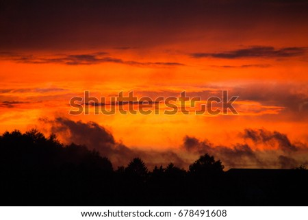 dramatic evening sky with silhouettes of plants and trees in the foreground and a red, orange cloudscape in the sunset sky of a sunny sundown