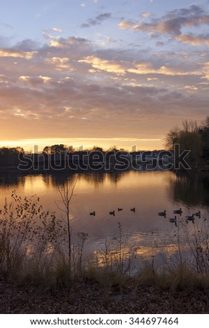 Dramatic landscape sunrise over a lake with ducks and geese.