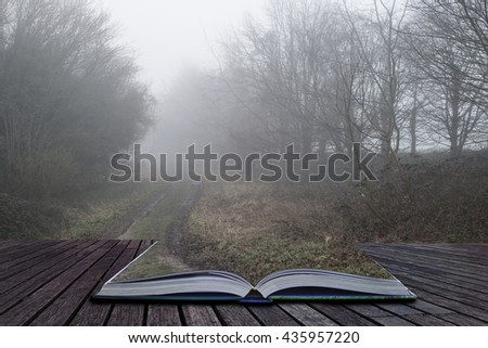 Dramatic moody foggy forest landscape Spring Autumn Fall - stock photo