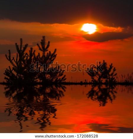 dramatic red sunset background - stock photo