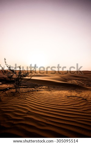 Dramatic sunrise view of the Liwa Desert in the Western Region of Abu Dhabi - stock photo