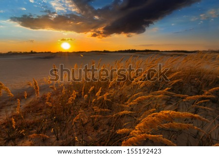 dramatic sunset over a steppe