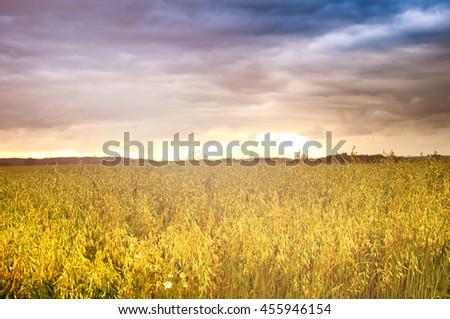 Dramatic sunset over fields - stock photo
