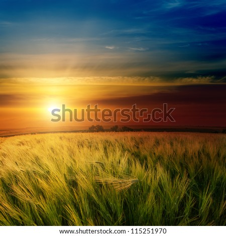 dramatic sunset over green field - stock photo