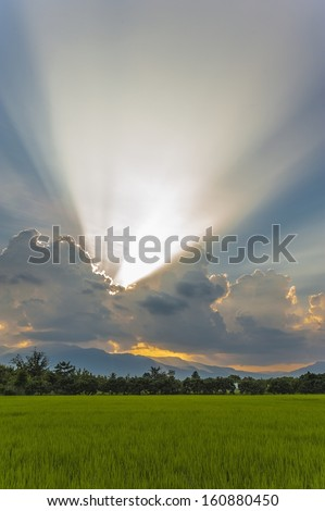 Dramatic sunset with cloudscape in rice field, Chiangmai, Thailand - stock photo