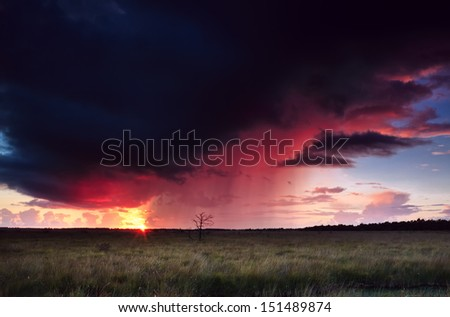 dramatic thunderstorm at sunset over swamp - stock photo