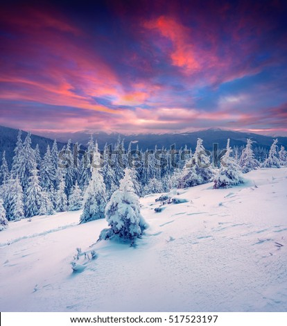Dramatic winter sunrise in Carpathian mountains with snow covered trees. Colorful outdoor scene, Happy New Year celebration concept. Artistic style post processed photo.