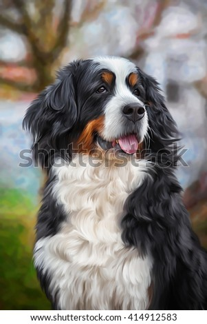 Drawing Bernese Mountain Dog, portrait on a color background