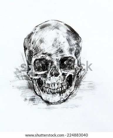 Drawing black and white of  human skull on paper