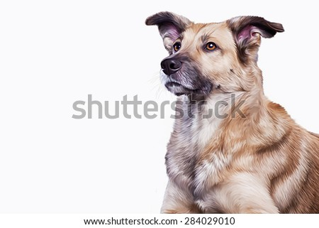 Drawing brown mongrel dog, portrait on a white background