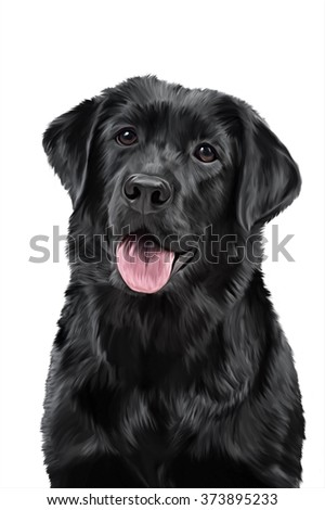 Drawing dog breed Black Labrador, portrait on a white background