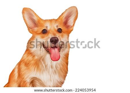 Drawing Dog breed Welsh Corgi, Puppy,  - stock photo
