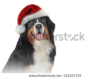 Drawing, illustration funny dog breed Bernese Mountain Dog portrait on a white background, in the red hat of Santa Claus