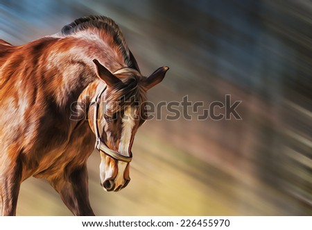 Drawing of a horse, portrait - stock photo