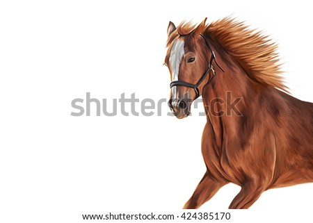 Drawing of a horse, portrait oil painting on white background - stock photo