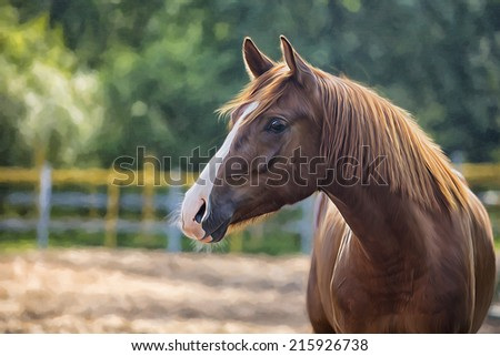 Drawing of a horse, red, portrait - stock photo