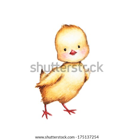 Drawing of Cute Chick  - stock photo