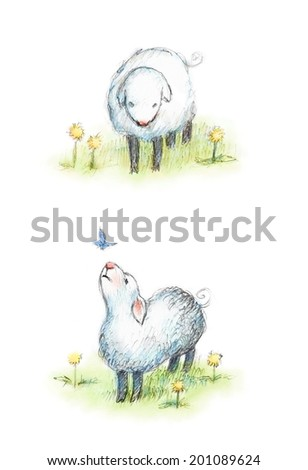 Drawing of sheep and butterfly - stock photo
