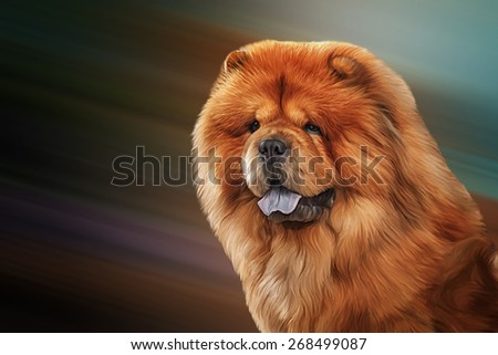 Drawing of the dog chow chow, red, portrait on a color background