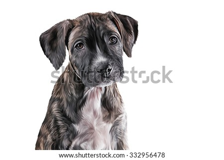Drawing Puppy American Staffordshire Terrier portrait on a white background - stock photo