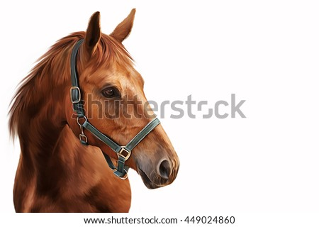 Drawing Red horse portrait on a white background - stock photo