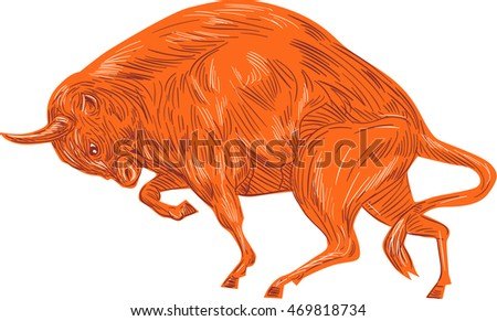 Drawing sketch style illustration of an angry European bison bull charging viewed from the side set on isolated white background.