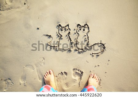 drawing two cats on the sand