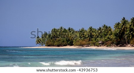 Dream beach with coconut palm trees, ocean and blue sky
