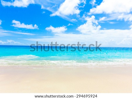 Dream Jungle Palms  - stock photo