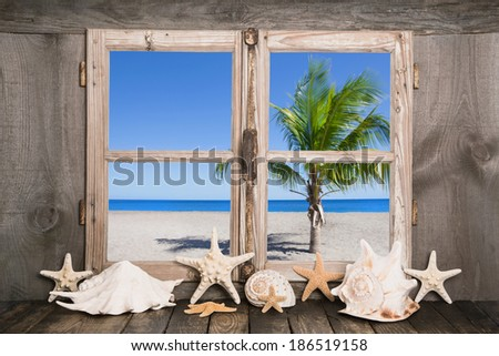Dreaming on the sea ... view of a old wood window to the ocean with one palm tree. - stock photo