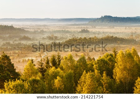 Dreamlike landscape in Finland in the morning. Distant forest covered by the fog and mist rising from the swamp. - stock photo