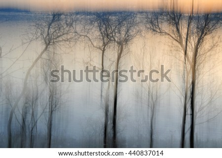 Dreamlike mysterious nature tree background - stock photo