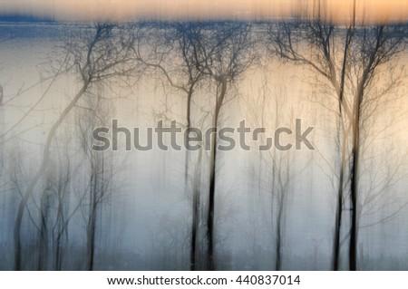 Dreamlike mysterious nature tree background - stock photo