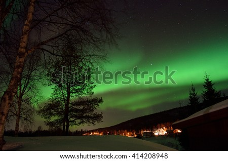 dreamy aurora borealis dancing on winter night sky behind forest and trees