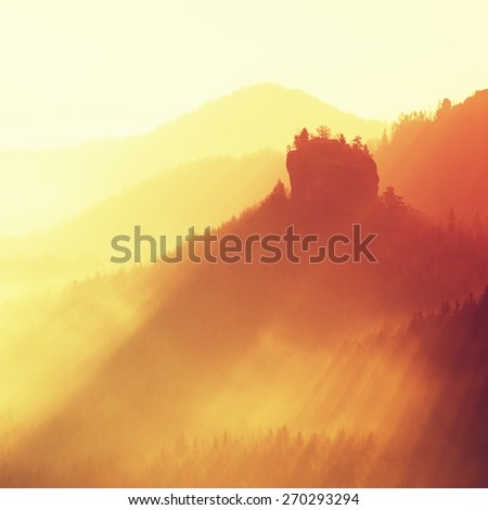 Dreamy fogy landscape, gentle orange misty sunrise in a beautiful valley of Saxony Switzerland park. Sharp hill increased from fog. - stock photo