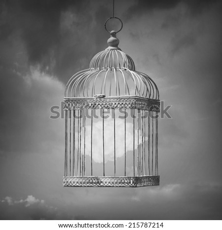 Dreamy image in black and white that represent a cloud inside a cage - stock photo