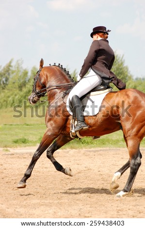 Dressage Rider Stock Images, Royalty-Free Images & Vectors ...