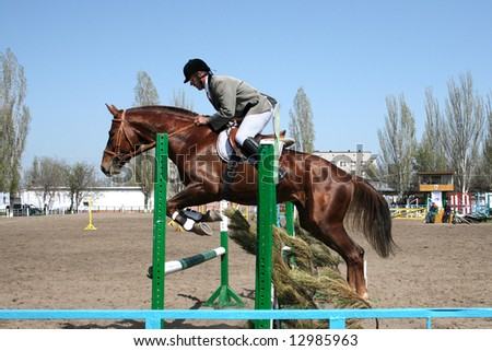 Dressage horse jumping over an obstacle on a local competition