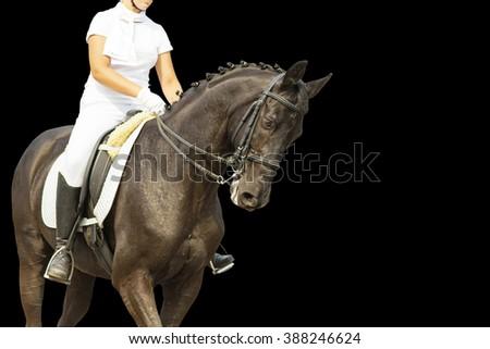 Dressage horse on black background. - stock photo