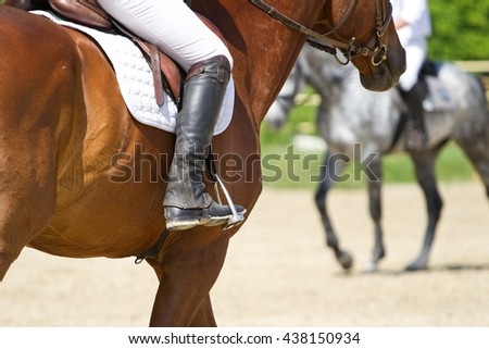 Dressage horse rides in the arena - stock photo