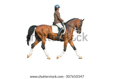 Dressage rider isolated on white background.