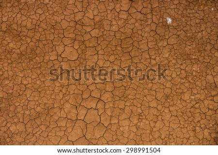 Dried and Cracked ground soil for background and texture - stock photo