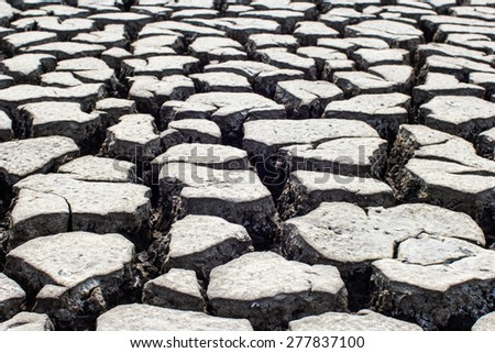 Dried and Cracked ground soil texture - stock photo