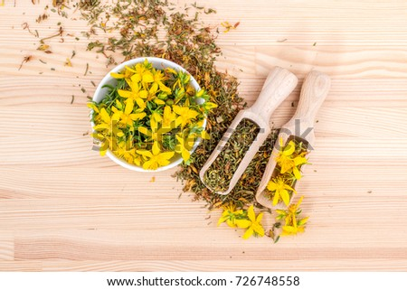dried and fresh, flowering St. John's wort / St. John's wort / medicinal herb