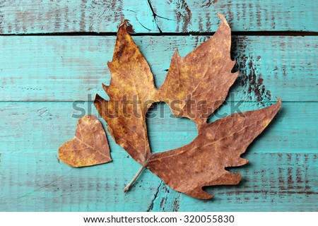 Dried autumn leaf with cutout heart on wooden background - stock photo