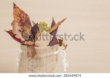 dried autumn leaves - stock photo