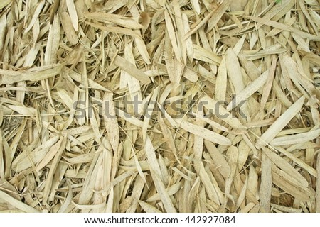 Dried bamboo leaves background