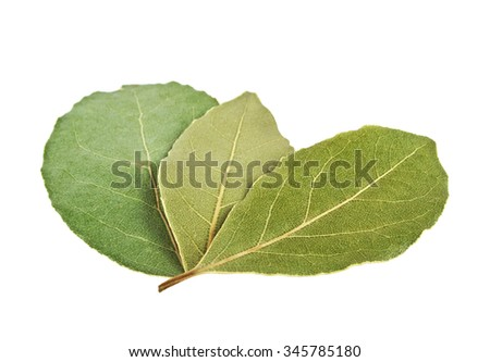 Dried bay laurel leaves isolated on a white background