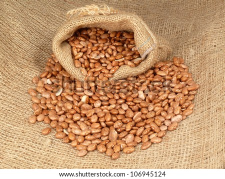 dried beans in the bag - stock photo