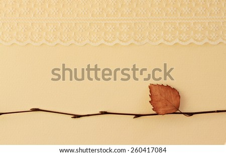 Dried birch tree twigs with lace ribbon - stock photo